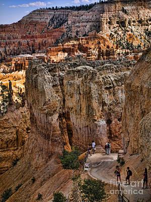 Photograph - Bryce Canyon Walking Trail by Brenda Kean