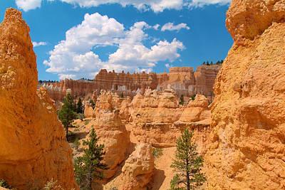 Photograph - Bryce Canyon Walls 2 by Richard J Cassato