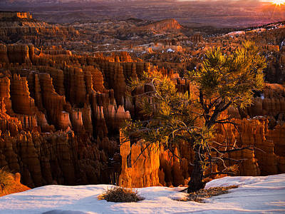 Photograph - Bryce Canyon Winter Sunrise by Leland D Howard