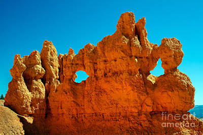 Photograph - Bryce Carving by Robert Bales