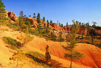 Photograph - Bryce Delicate Landscape by Greg Norrell