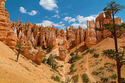 Photograph - Bryce Hills 3 by Richard J Cassato