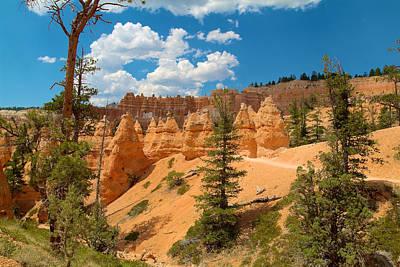 Photograph - Bryce Hills 4 by Richard J Cassato