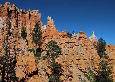 Photograph - Bryce Pinnacles by Jemmy Archer