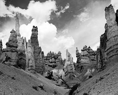 Photograph - Bryce Sentinels by Jim Snyder