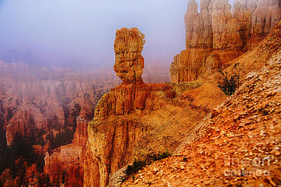 Photograph - Bryce Totems by Rick Bragan