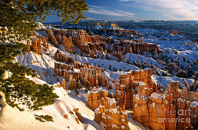 Snow Canyon State Park Photograph - Bryce Winter by Inge Johnsson