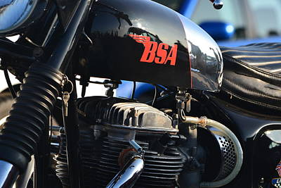 Photograph - BSA by Dean Ferreira
