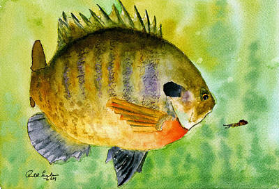 Panfish Painting - Bubba Bluegill by Paul Temple