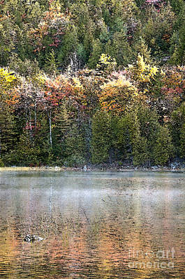 Photograph - Bubble Pond Acadia National Park by Glenn Gordon