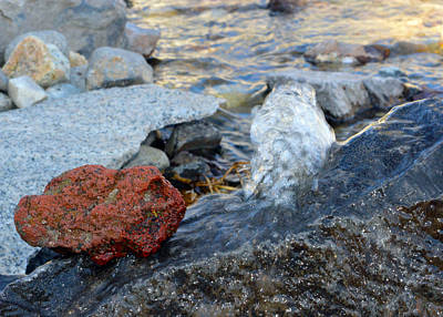 Photograph - Bubbling Rocks by Brent Dolliver