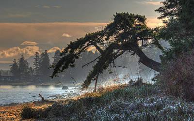 Photograph - Buccaneer Beach by Randy Hall