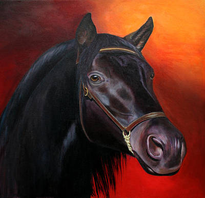 Painting - Bucephalas - Horse Of Alexander The Great by Jill Parry