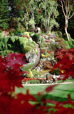 Photograph - Buchart Gardens by Rexford L Powell