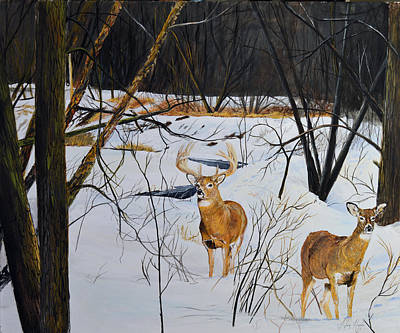 Whitetail Fawn Painting - Buck Creek - Not Going To Happen by Alvin Hepler