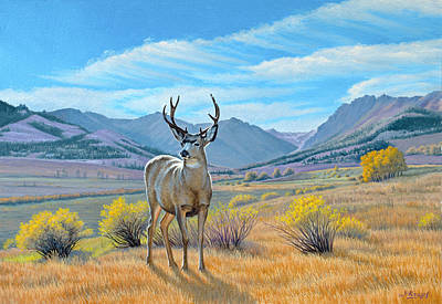 Mule Painting - 'buck Deer-tom Miner Basin' by Paul Krapf