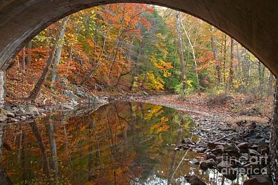 Photograph - Bucks County Foliage Under The Bridge by Adam Jewell