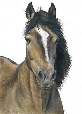 Drawing - Buckskin Stallion by Fran Megerdichian