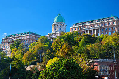 Photograph - Buda Castle In Budapest by Michal Bednarek