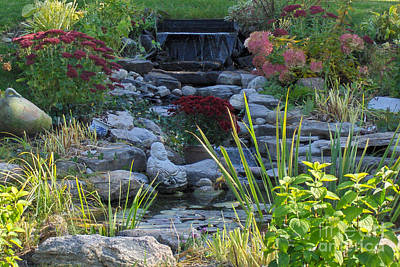 Art Print featuring the photograph Buddha Water Pond by Brenda Brown