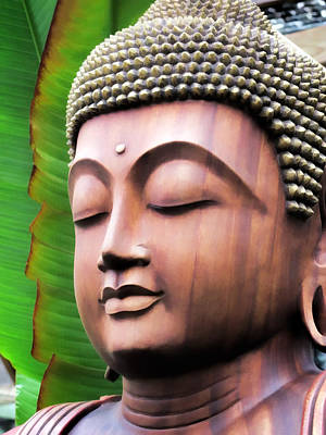 Photograph - Buddha 3 by Dawn Eshelman