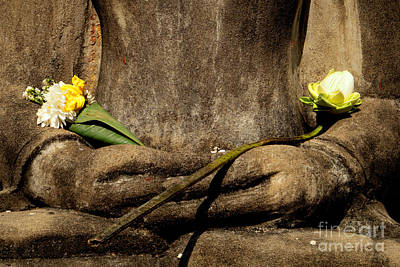 Buddhist Photograph - Buddha - Devotional Iv by Dean Harte