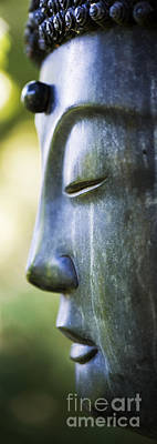 Meditating Photograph - Buddha Face by Tim Gainey