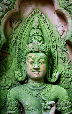 Photograph - Buddha In Green by Nola Lee Kelsey