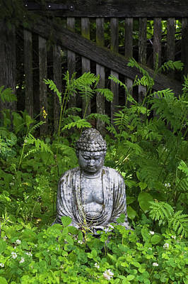 Photograph - Buddha Statue In A Zen Garden At Les by Perry Mastrovito / Design Pics