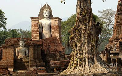 Photograph - Buddha Sukhothai Thailand 4 by Bob Christopher