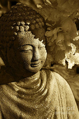 Photograph - Buddha's Kiss by Catherine Fenner