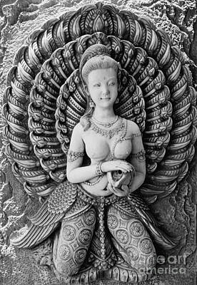 Just Desserts - Buddhist Carving 02 by Antony McAulay