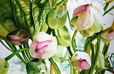 Lotus Bud Painting - Budding Lotus by Sarah Bent