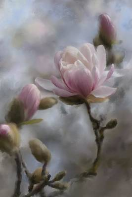 Early Spring Digital Art - Budding Magnolia Branch by Karen Forsyth