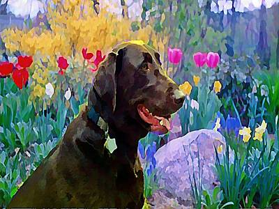 Chocolate Labrador Retriever Digital Art - Buddy In Heaven by Anne Sterling