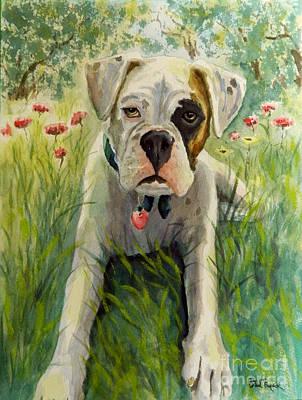 Buddy The Boxer Art Print