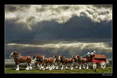 Budweiser Clydesdales Print by Blake Richards