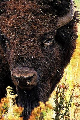 Digital Art - Ragweed Buffalo by Jim Pavelle