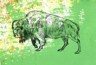 Buffalo 11 Art Print