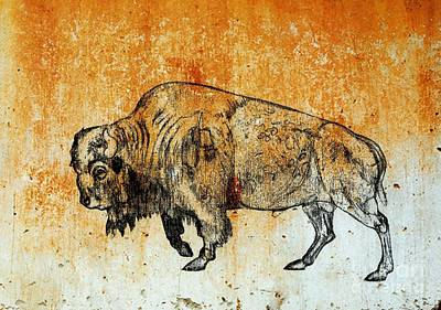 Drawing - Buffalo 8 by Larry Campbell