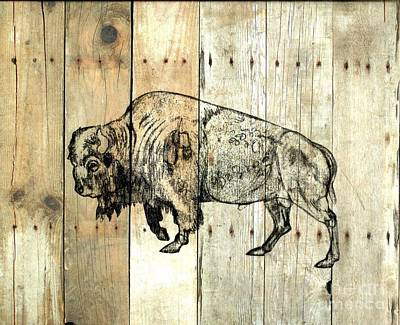 Drawing - Buffalo 9 by Larry Campbell