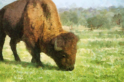 Digital Art - Buffalo Grazing  by Ann Powell