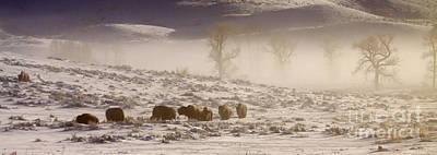 Buffalo In The Fog   #6953 Original by J L Woody Wooden