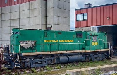 Photograph - Buffalo Southern 2010 by Guy Whiteley