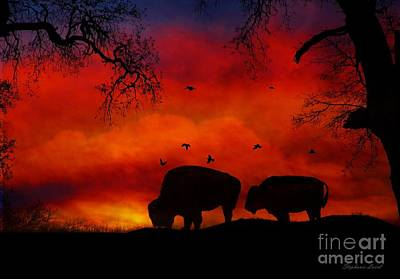 Bison Photograph - Buffalo Sunset by Stephanie Laird
