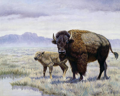 Indian Fine Art Painting - Buffalo Watering Hole by Gregory Perillo