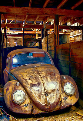 Photograph - Bug In A Barn by Natalie Rotman Cote