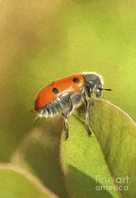 Bug On Leave Art Print by Perry Van Munster