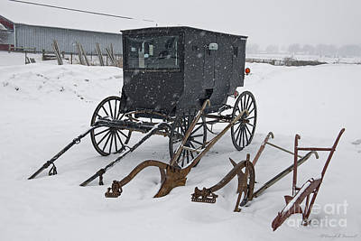 Amish Photograph - Buggy And Plows by David Arment