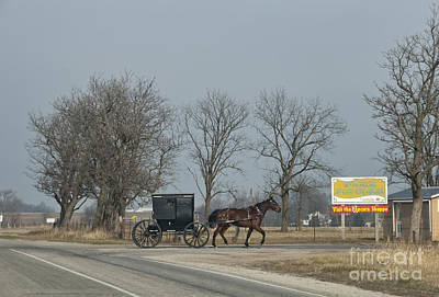 Amish Photograph - Buggy And Yoders Popcorn by David Arment